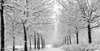 Common expressions used to talk about cold weather