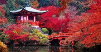 Best autumn landscapes